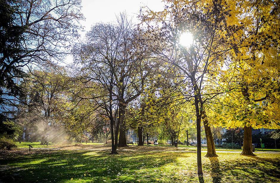 novembar, lepo vreme, sunce, sunčano, vrućina, temperatura, proleće