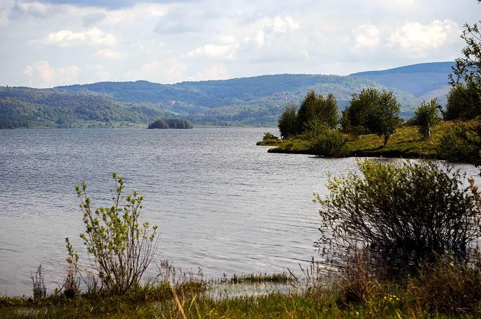 vlasina, vlasinsko jezero, plutajuće ostrvo, priroda, srbija, zelenilo,