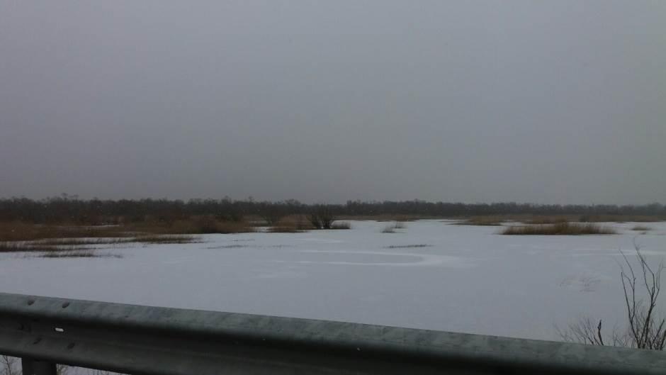 Primorci u čudu, nešto belo pada s neba (FOTO)