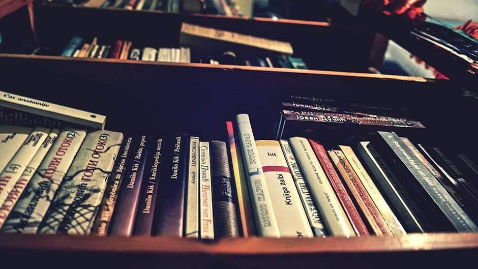 knjige pisci