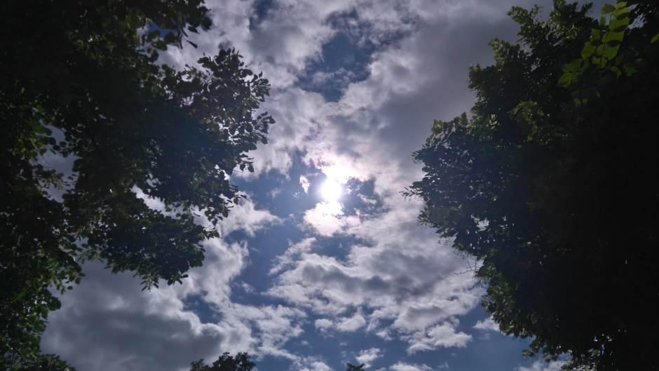 nebo, sunce, oblaci, sunce i oblaci, oblačno, naoblačenje, kroz granje nebo