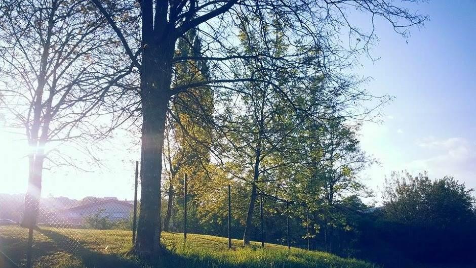 sunce, vrijeme, proljeće, priroda