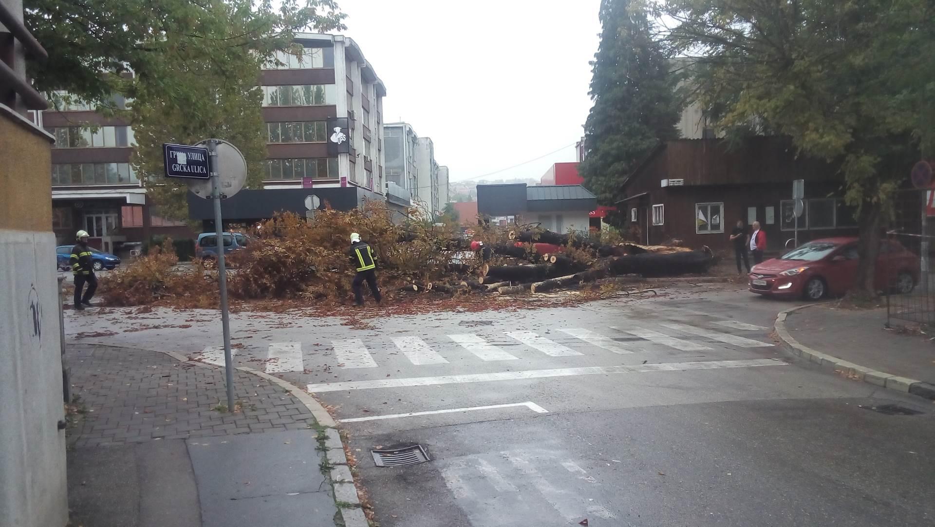 Banjaluka: Stablo palo na ulicu (FOTO)