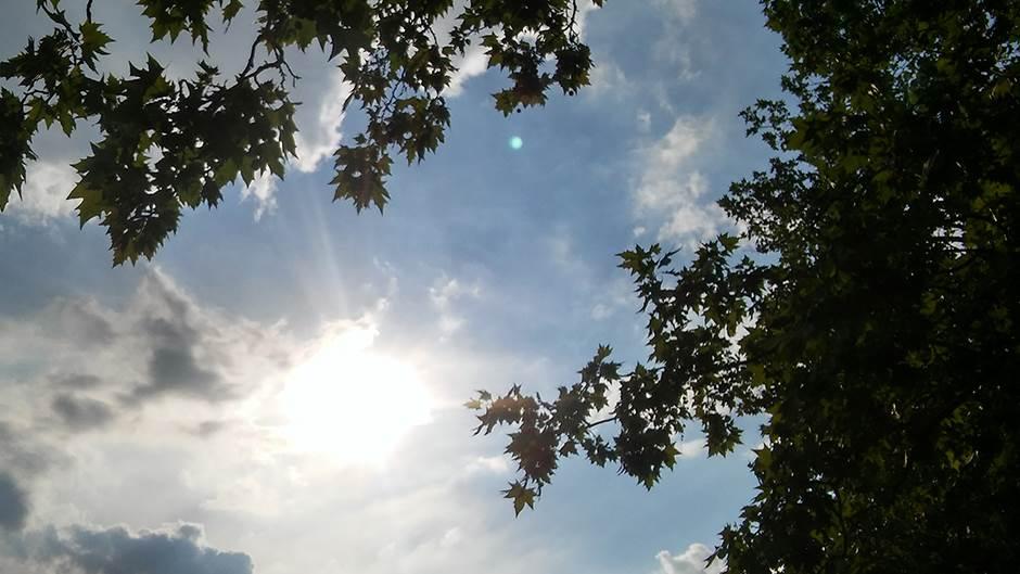 sunce2.jpg