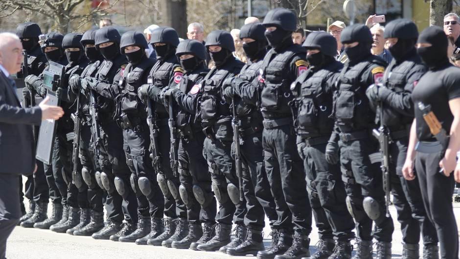 Policija, milicija, Jedinica za podršku, specijalci