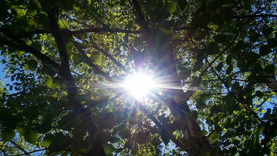 Danas sunčano i toplo vrijeme, popodne ponegdje kiša