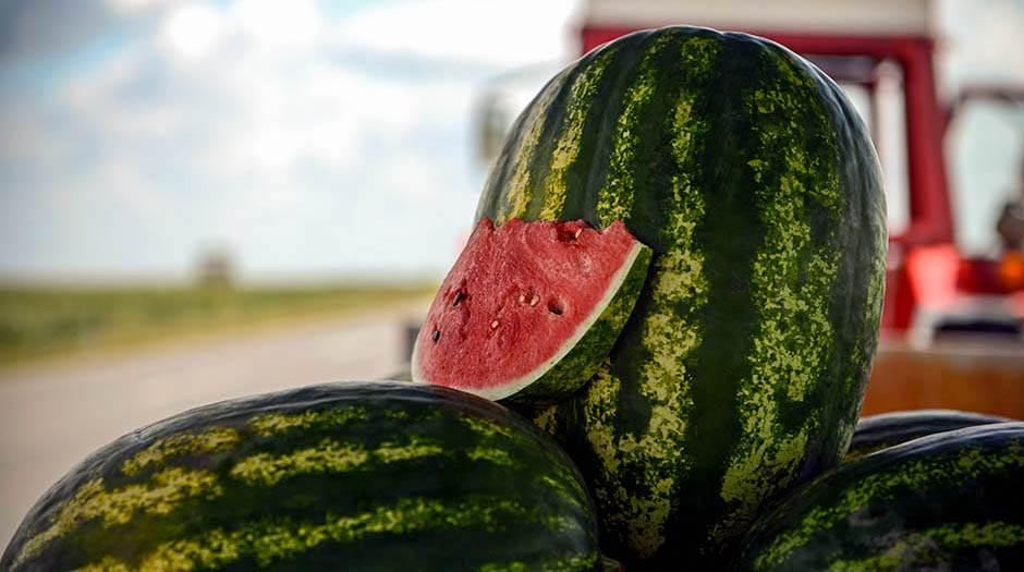Neobičan trik za još ukusniju lubenicu