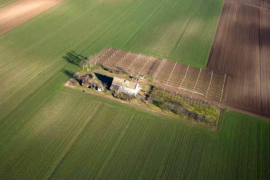 vojvodina, njiva, njive, oranice, poljoprivreda, kuća srbija ekologija privreda zemljište zemlja imanje