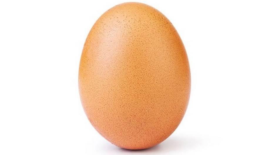 EggPower, Egg, Eggs