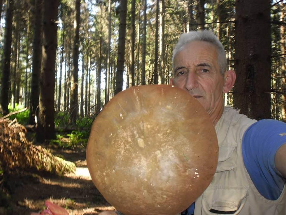 Kozara: Raj za ljubitelje gljiva