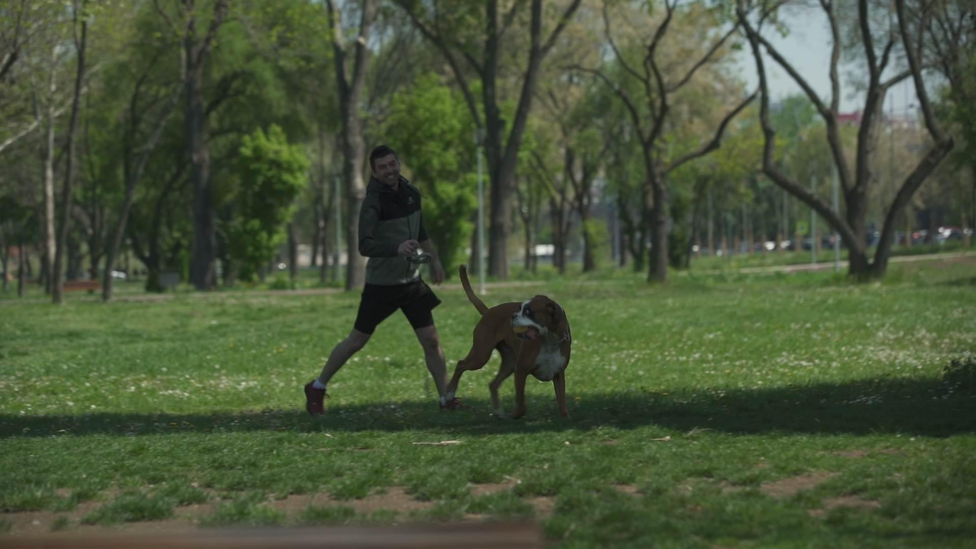 Pozor, jesi li brži od ženke boksera? (VIDEO)