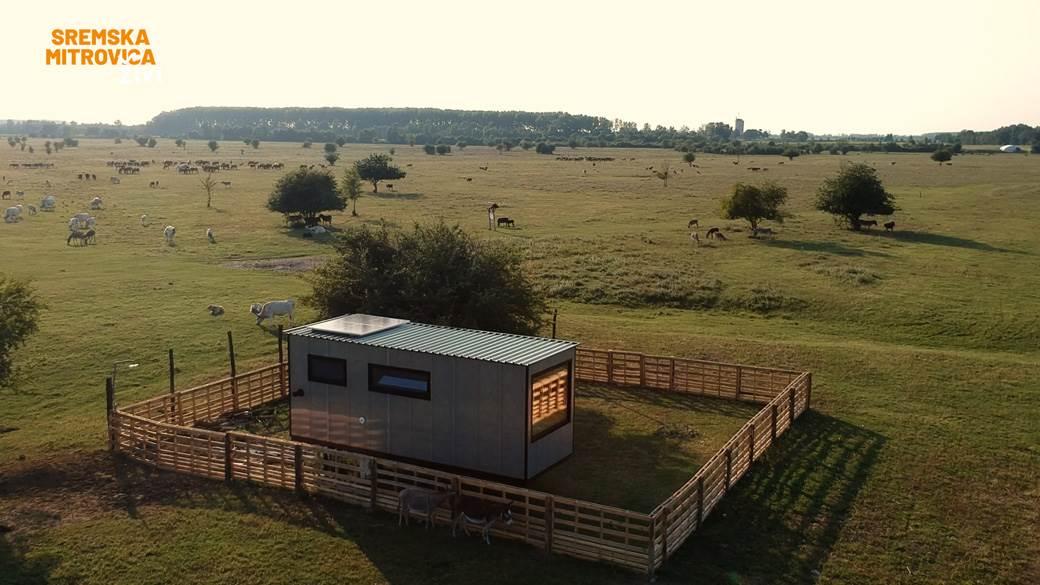 Buzzoffski kamp kućica