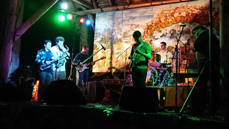 zelenkovac festival 1