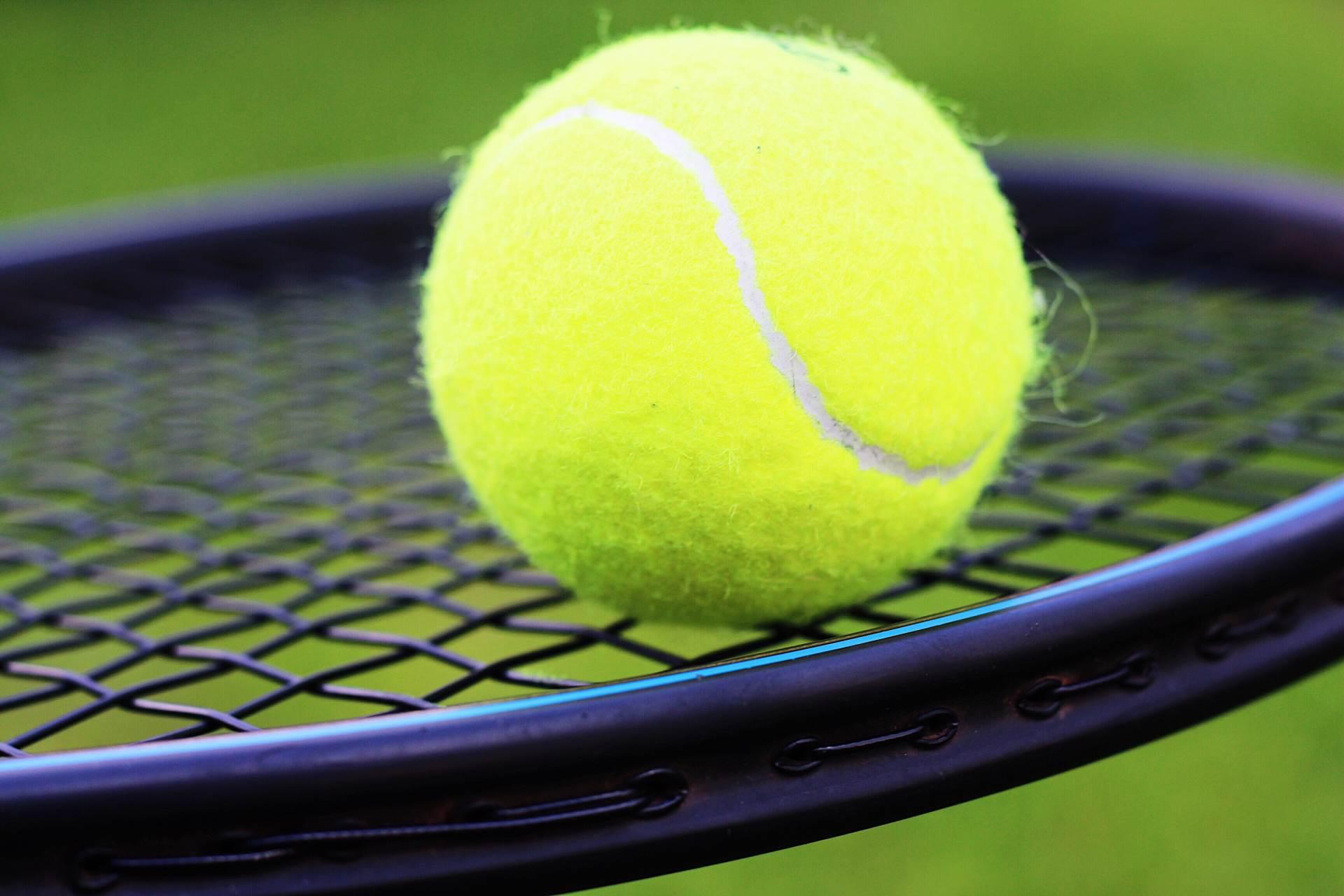 tennis-ball-