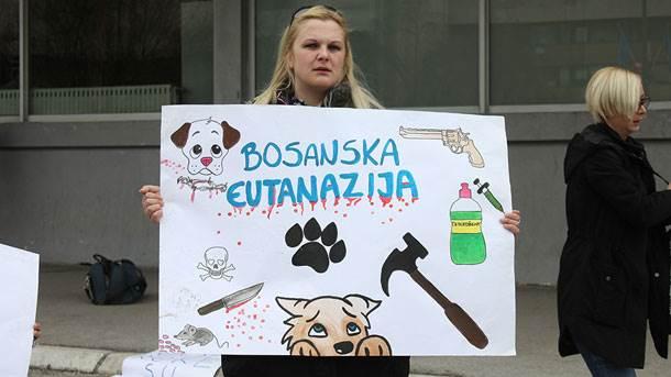 Protest zbog ubijanja pasa lutalica u Sarajevu