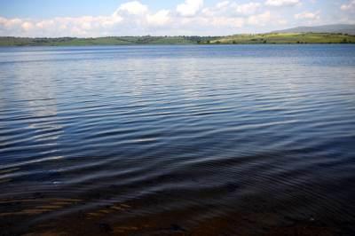 vlasina, vlasinsko jezero, priroda, srbija, zelenilo,