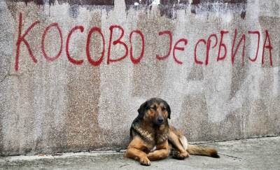 kosovo, grafit, kosovo je srbija, pas, kosovska mitrovica,