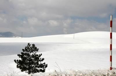 zlatibor, sneg, planina, srbija, zima, hladno, skijanje, sankanje, snežno.