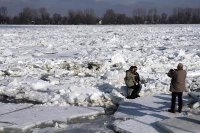 dunav, led, splavovi, zaleđen, splavovi, zima