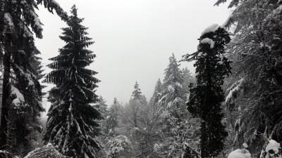 snijeg, zima, poledica, brdo, planina