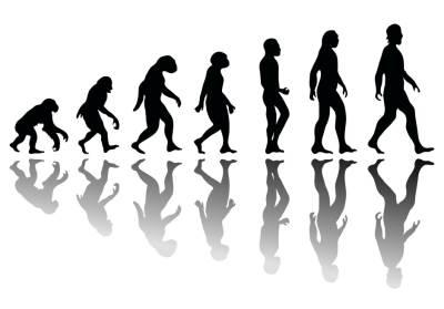Darwin, Darvin, evolucija, teorija evolucije