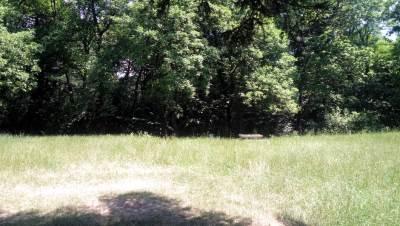 trešnjik, trava, izletište