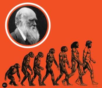 darvin darvinova teorija evolucije