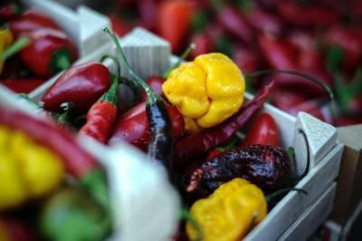 fish fest, ljuta paprika, papričica, povrće, paprike