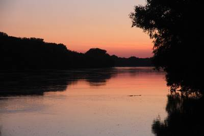 gornje podunavlje, podunavlje, močvara, bara, priroda, prirodne lepote, monoštor, atar, šuma reka zalazak sunca