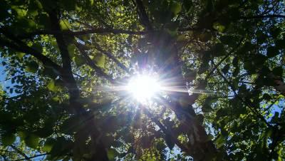 sunce, sunčano