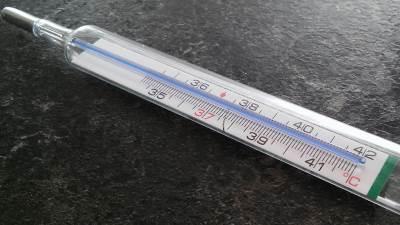 toplomer, temperatura