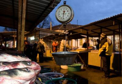 Zemun, zemunska pijaca, riba, prodaja, pijaca, vaga, kantar