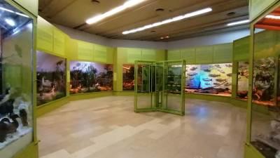 Muzej RS, prirodnjački odsjek, izložba
